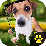 iphonex狗安卓版