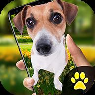 iphonex狗 V1.0 安卓版