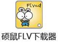 硕鼠FLV视频下载器 V0.4.8.1 PC版