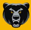 黑熊搏击 V1.6.10.3 安卓版