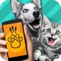 狗语翻译器 V1.1 安卓版