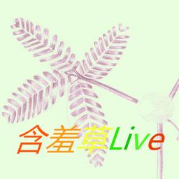 含羞草直播 V1.0 安卓版