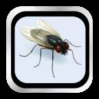 苍蝇飞在屏幕上 V1.2.0 IOS版