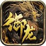 御龙战歌 V1.0 安卓版