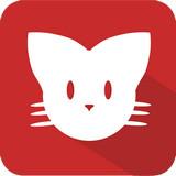 猫咪maomiav永久发布安卓免费版