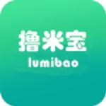 撸米宝贷款 V1.0 安卓版