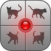 抖音猫语翻译器 V1.0 安卓版