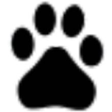百度云网盘不限速破解SVIP版 V8.4.0 免费版