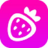 草莓影视安卓版
