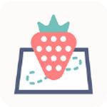 草莓地图 V1.0.1 安卓版
