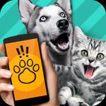 动物语言交流器 V1.0 ios版