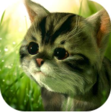 猫咪追寻:神秘探险 V0.85 安卓版