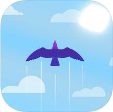 天空飞鸣 V1.1 苹果版