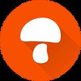 蘑菇租房 V5.3.0 安卓版