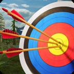 射箭大师3D V2.9 修改版