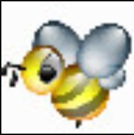 BeeBEEP(局域网聊天共享工具) V3.0.8 绿色版