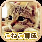3D猫咪养成 V1.2.1 汉化版