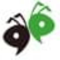 蚂蚁工资条 V1.1.6 免费版