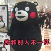 熊本熊我和别人不一样表情包电脑版