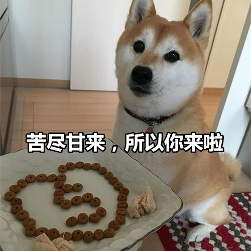 柴犬七夕土味情话表情包