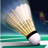 真实羽毛球世界冠军 V1.0 破解版