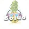 Boluo宝盒 V1.0 免注册版