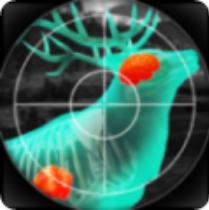 猎人与射手3D V1.307 苹果版