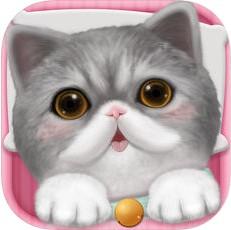 心动小猫 V1.37.0 iOS版