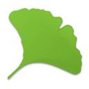 Gingko Mac版下载|Gingko官方版下载V2.2.4