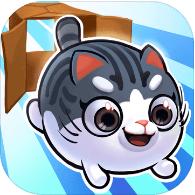 盒子里的猫2 V1.1 破解版