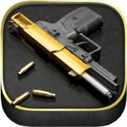 iGun Pro V5.30 iOS°æ