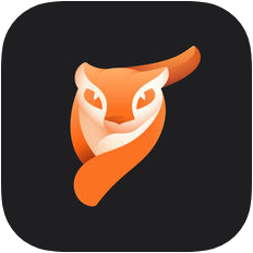 Enlight Photoloop V1.1.2 苹果版