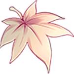 神木林 V5.1.0 安卓版