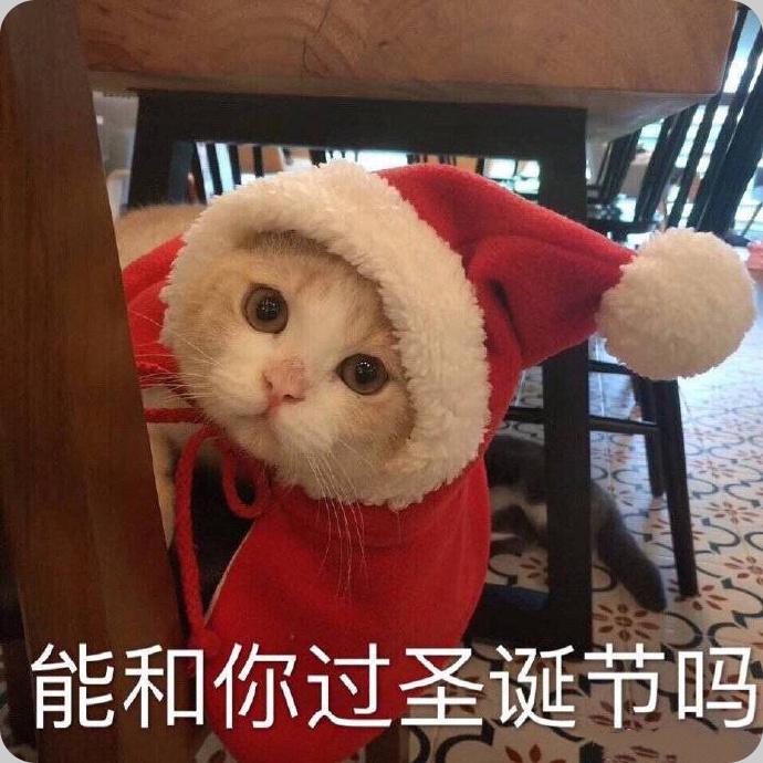 今夜我就是你的圣诞礼物表情包电脑版