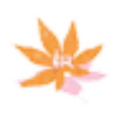 若枫萌化工具箱 V1.4.1 免费版