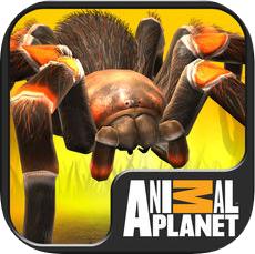 我的蜘蛛(Real Scary Spiders) V1.4.3 苹果版