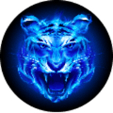 四虎永久地址 V5.0.1 安卓版