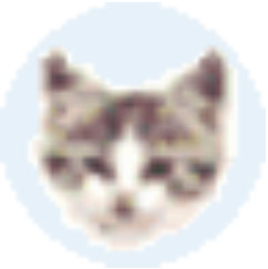 EF File Catalog(文件管理工具) V19.01 免费版