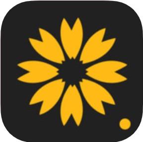 超美壁纸 V1.3 苹果版