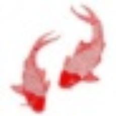 连年有余记账助手 V1.2.7.245 免费版
