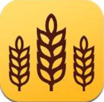 金麦浏览器 V8.2.1.18 安卓版