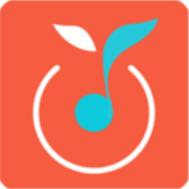青桔音乐 V1.8 安卓版