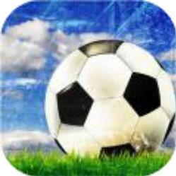 传奇冠军足球 V1.0 安卓版