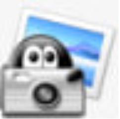 SortKing(相片排序工具) V1.3.0 免费版