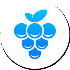 Grape V2.10.0 Mac版