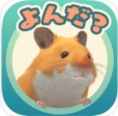 云仓鼠 V1.0.3 安卓版