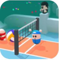 彩色排球3D V0.2 安卓版