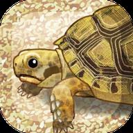 治愈系乌龟 V1.2 安卓版
