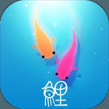 鲤 V1.3 破解版