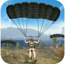 皇家战斗突击队 V1.0 安卓版